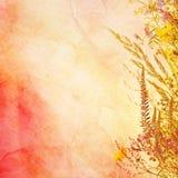 花卉复活节背景 库存照片