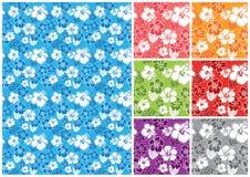 花卉夏威夷无缝 免版税库存图片
