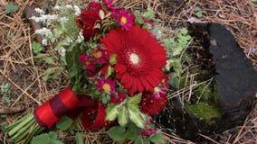 花卉婚礼安排 花束基于一个老木树桩 股票视频