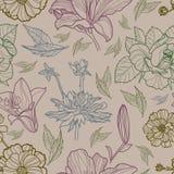 花卉干燥标本集模式无缝的向量 库存图片