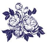 花卉开花的玫瑰色分支传染媒介例证剪影 向量例证