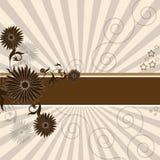 花卉抽象背景褐色 免版税库存照片