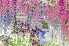 花卉抽象背景 库存图片