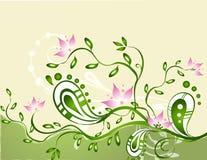 花卉抽象 免版税库存图片