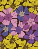 花卉挽歌 库存图片