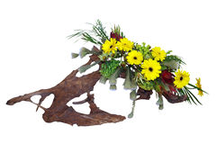 花卉排列漂流木头 免版税图库摄影