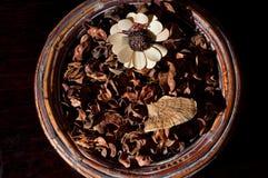 花卉排列秋天 库存图片