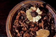 花卉排列秋天 免版税库存图片