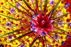 花卉排列 图库摄影