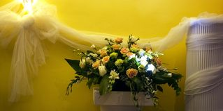 花卉排列 库存图片