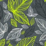 花卉新鲜的叶子仿造无缝的向量 免版税库存照片