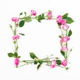 花卉方形的框架由桃红色玫瑰、分支和叶子制成在白色背景 平的位置,顶视图 背景构成旋花植物空白花的郁金香 免版税库存照片