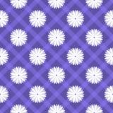 花卉无缝的样式。传染媒介例证 图库摄影