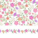 花卉无缝的样式和边界 库存照片