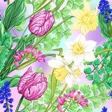 花卉无缝的样式,与春天的背景开花 向量例证