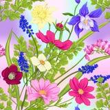 花卉无缝的样式,与春天的背景开花 库存例证