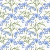 花卉无缝的样式,在白色背景的动画片逗人喜爱的花 库存图片