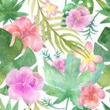 花卉无缝的热带样式,密集的密林 皇族释放例证