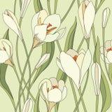 花卉无缝的背景。柔和的花纹花样。 向量例证