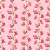 花卉无缝的背景。柔和的花纹花样。 库存例证