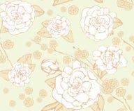 花卉无缝的背景。 免版税图库摄影
