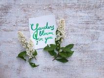 花卉构成与 免版税库存照片
