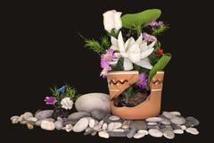 花卉构成照片 免版税库存图片