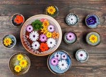 花卉构成顶视图 库存图片