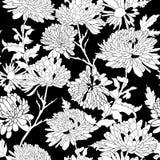 花卉样式。与菊花的背景。 免版税库存照片