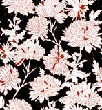 花卉样式。与菊花的背景。 库存图片