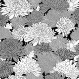 花卉样式。与菊花的背景。 免版税图库摄影