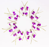 花卉样式圈子框架由小森林制成开花在白色背景的紫罗兰 库存图片