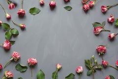 花卉样式由桃红色灌木玫瑰做成,绿色在灰色背景离开 平的位置,顶视图 免版税图库摄影