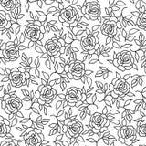 花卉样式花玫瑰色概述背景华丽装饰品 库存照片