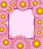 花卉框架、春天或者夏天背景,贺卡 免版税库存照片