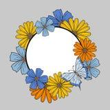 花卉框架、花的五颜六色的收藏和蝴蝶 库存例证