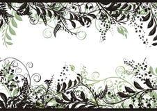 花卉框架向量 库存照片