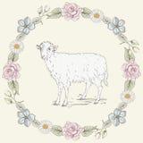 花卉框架和绵羊葡萄酒板刻样式 免版税库存照片