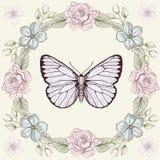 花卉框架和蝴蝶板刻样式 图库摄影