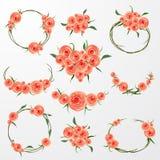 花卉框架收藏 套桃红色玫瑰开花完善对婚姻的邀请和生日贺卡 库存照片