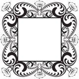 花卉框架构成系列 图库摄影