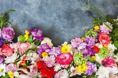 花卉框架构成系列 库存图片