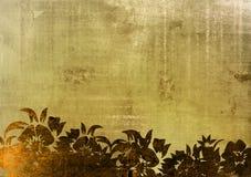 花卉框架样式 图库摄影