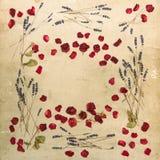花卉框架玫瑰淡紫色花 脏的纹理 库存照片