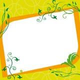 花卉框架生动描述正方形 库存图片