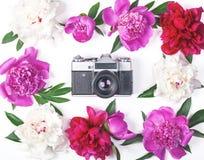 花卉框架由桃红色和白色牡丹和叶子制成有减速火箭的照片照相机的在白色背景 平的位置 免版税库存照片