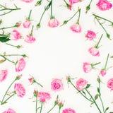 花卉框架由桃红色玫瑰、芽和叶子制成在白色背景 红色上升了 平的位置,顶视图 免版税库存图片