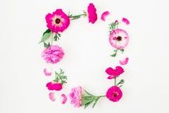 花卉框架由桃红色花、玫瑰、牡丹和叶子制成在白色背景 所有所有构成要素花卉例证各自的对象称范围纹理导航 平的位置,顶视图 免版税库存照片