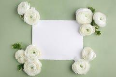 花卉框架由白花和叶子制成在绿色背景 背景细部图花卉向量 平的位置,顶视图 库存照片