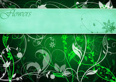 花卉框架绿色 向量例证